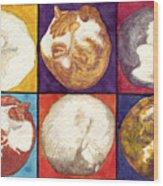 Cat Planets Wood Print
