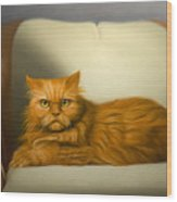 Cat Portrait Of Tosca Wood Print