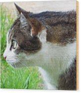 Cat Profile Wood Print