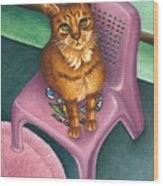 Cat Sitting On A Painted Chair Wood Print