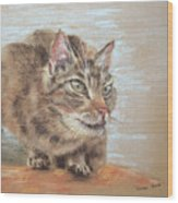 Cat Sitting On Lookout Wood Print