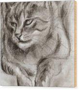 Cat Study Drawing No One Wood Print