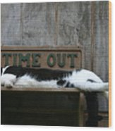 Cat Time Out Wood Print