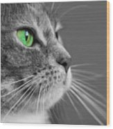 Cat With Green Eyes Wood Print