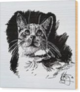 Cat With Ink Wood Print