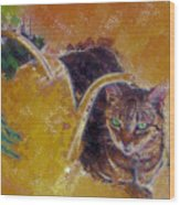 Cat With Watering Can Wood Print
