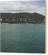 Catalina Bay Wood Print