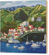 Catalina Island 2 Wood Print by Milagros Palmieri