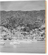 Catalina Island Avalon Bay Black And White Panorama Photo Wood Print
