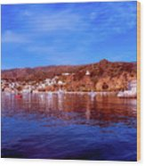 Catalina Island Wood Print