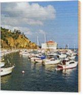 Catalina Kodachrome Wood Print