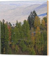 Catalina Mountains In The Fall Wood Print