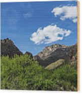 Catalina Mountains In Tucson Arizona Wood Print