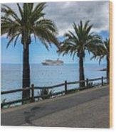 Catalina Palms Wood Print