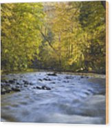 Cataloochee Valley River Wood Print