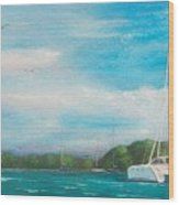 Catamaran In Salinas Harbor Wood Print