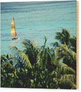Catamaran On Tumon Bay Wood Print