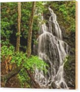 Cataract Falls In Great Smoky Mountains National Park Wood Print