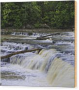 Cataract Falls Phase 1 Wood Print