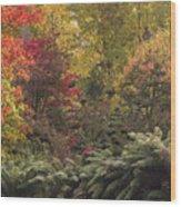 Cataract Gorge, Launceston, Tasmania Wood Print