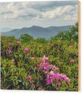 Catawba Rhododendrons Wood Print
