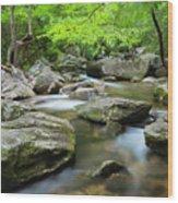 Catawba River In Summer Wood Print