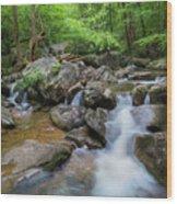 Catawba Stream In Pisgah National Forest Wood Print