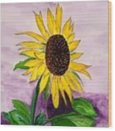 Catching A Sunflower  Wood Print