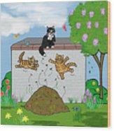 Tabby Cats Falling Wood Print