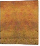 Catching The Last Sun_b2 Wood Print