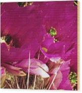 Catcus Flower Wood Print