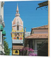 Catedral De Cartagena Wood Print