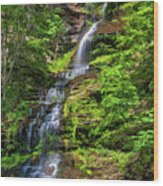 Cathedral Falls 2 - Paint Wood Print