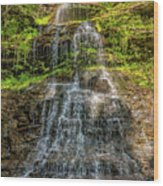 Cathedral Falls 3 Wood Print