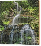 Cathedral Falls 4 - Paint Wood Print