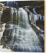 Cathedral Falls Wood Print