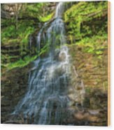 Cathedral Falls - Paint Wood Print