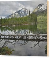 Cathedral Group Reflection On String Lake Wood Print