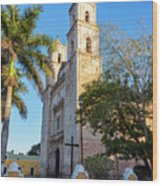 Cathedral In Valladolid Wood Print