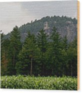 Cathedral Ledge North Conway Nh Wood Print