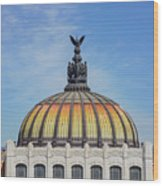 Cathedral Of Art In Mexico Wood Print