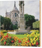 Cathedral Of Notre Dame Wood Print
