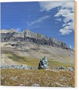 Cathedral Peak Over Waterton Valley Trail - Glacier National Park Wood Print