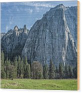 Cathedral Rock And Spires Wood Print