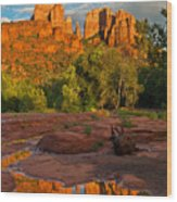 Cathedral Rock Reflection Wood Print by Guy Schmickle