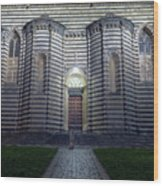 Cathedral Side Door Orvieto Italy Wood Print