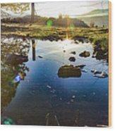 Catherine Creek Pond Wood Print