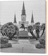 Catholic Basilica Jackson Sq Andrew Jackson New Orleans  Wood Print