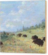 Catlin: Elk & Buffalo Wood Print