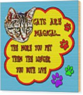 Cats Are Magical Wood Print